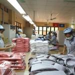 Xuất khẩu Ngành dệt May có nhiều lợi thế trong năm 2016